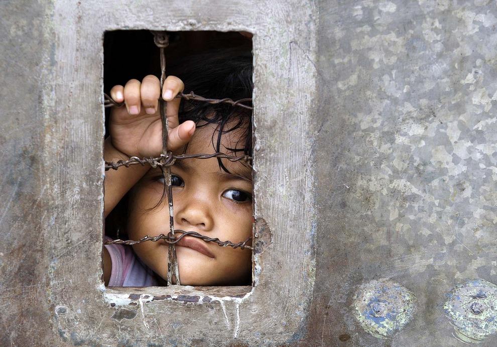 Новости дня в фотографиях: 27 апреля 2012 г. (10 фото)