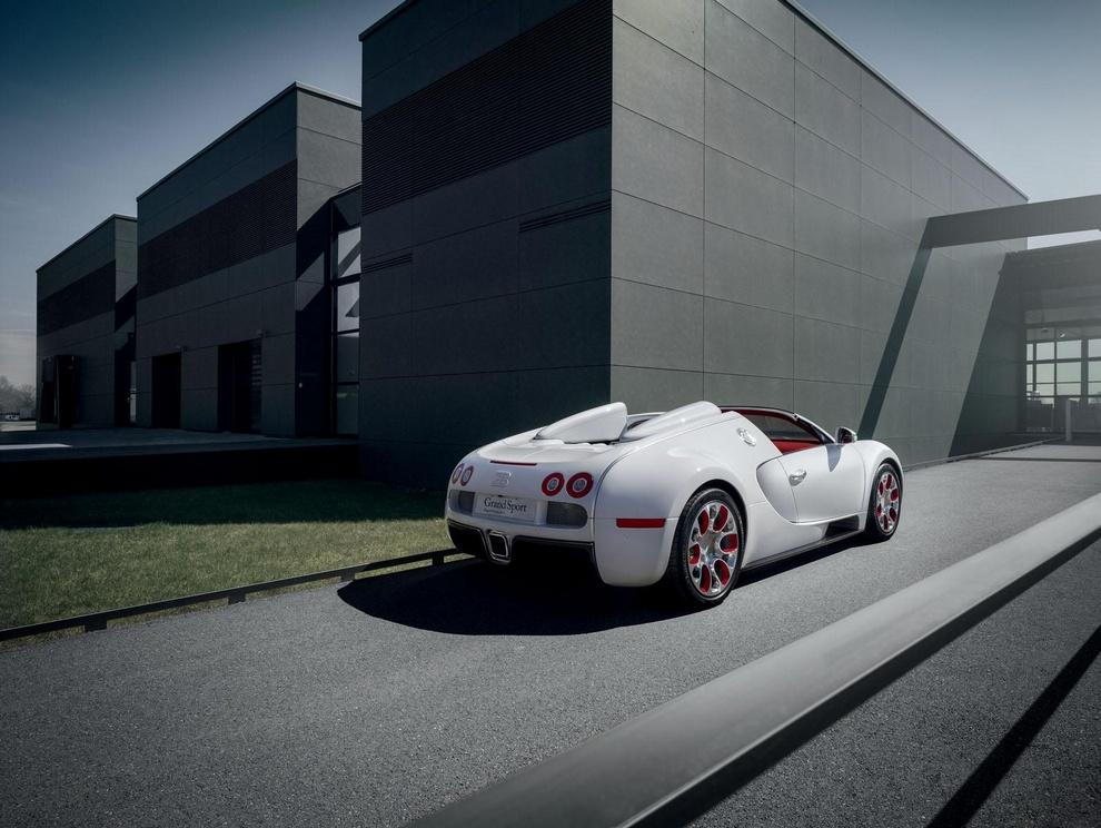 Белый дракон от Bugatti (10 фото)