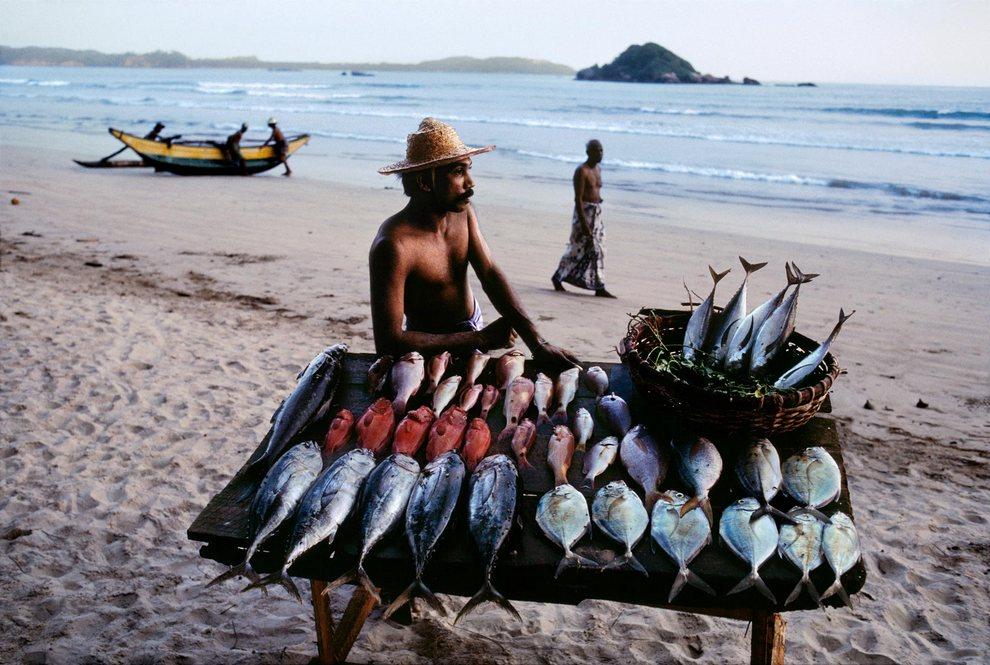 рыбалка на шри ланке цены 2016
