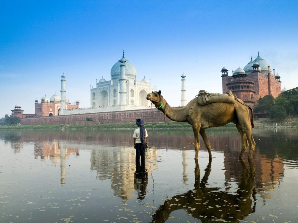 Мальчик привел верблюда на водопой к реке Ямуна, которая является самым длинным и многоводным притоком Ганга. (Rajkumar1220/flickr)