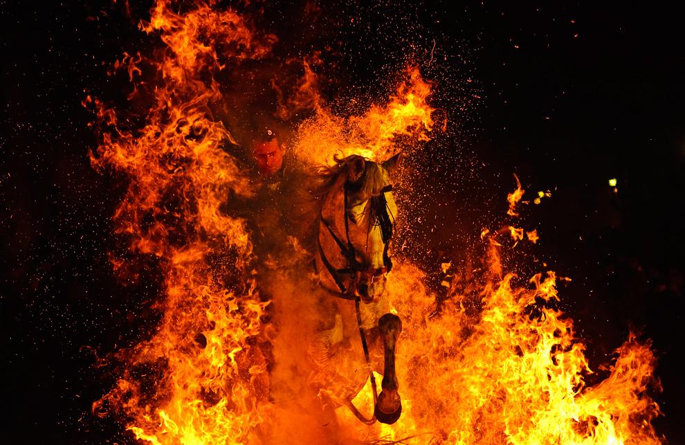 Мужчина на коне прорывается сквозь огонь на фестивале огня в честь Святого Антония, покровителя животных, Сан-Бартоломе-де-Пинарес, Испания. (AP Photo/Daniel Ochoa de Olza)