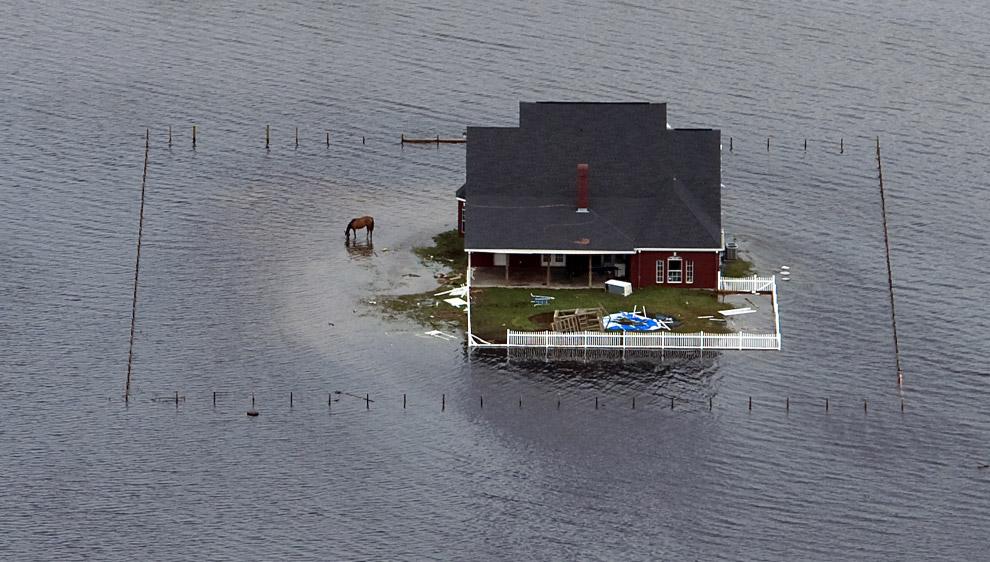 Осторожно, ураган! (20 фото)