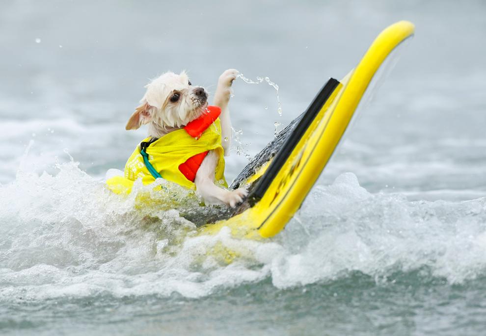 В предвкушении пляжного сезона (25 фото)