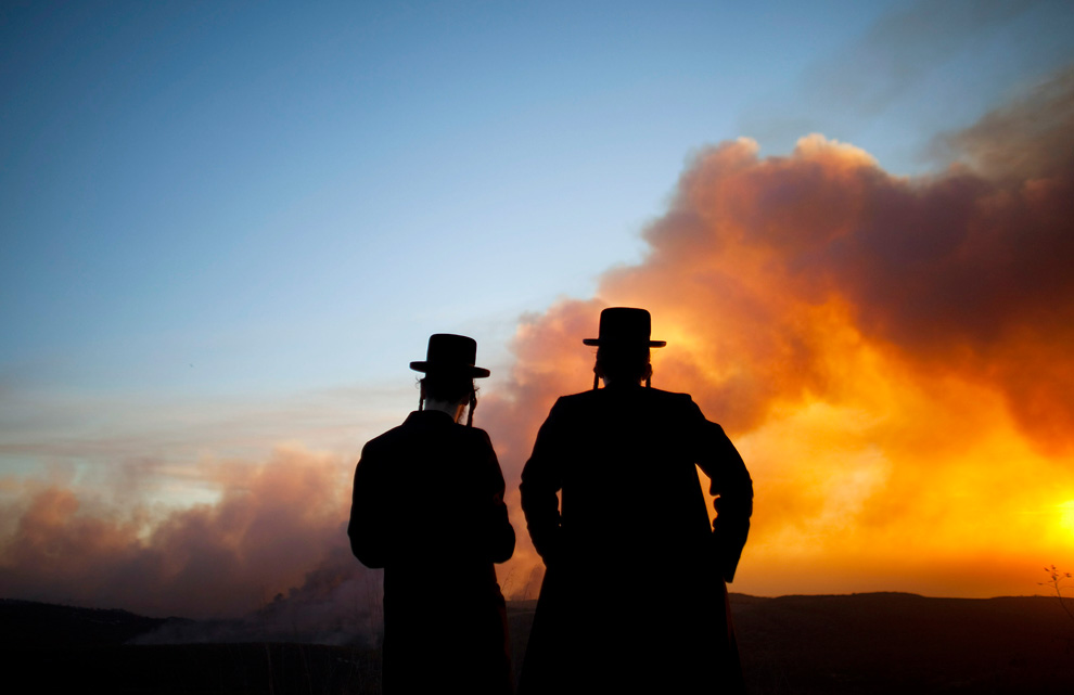 Лесные пожары в Израиле (20 фото)