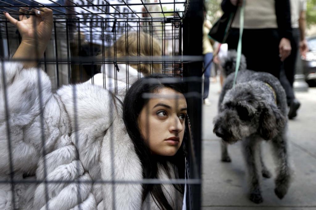 Собака смотрит как Алехандра Мендоса (Alejandra Mendoza) из организации PETA сидит в клетке в знак протеста в Филадельфии, США. PETA известна своей стойкой позицией против использования меха, кожи, шерсти и других частей животных в качестве одежды. (AP Photo/Matt Rourke)
