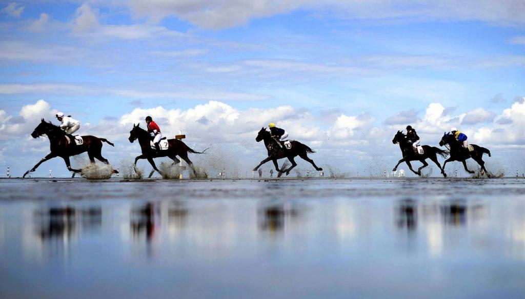 Скачки среди солончаков, Дунен, Германия. (Nigel Treblin/DAPD)