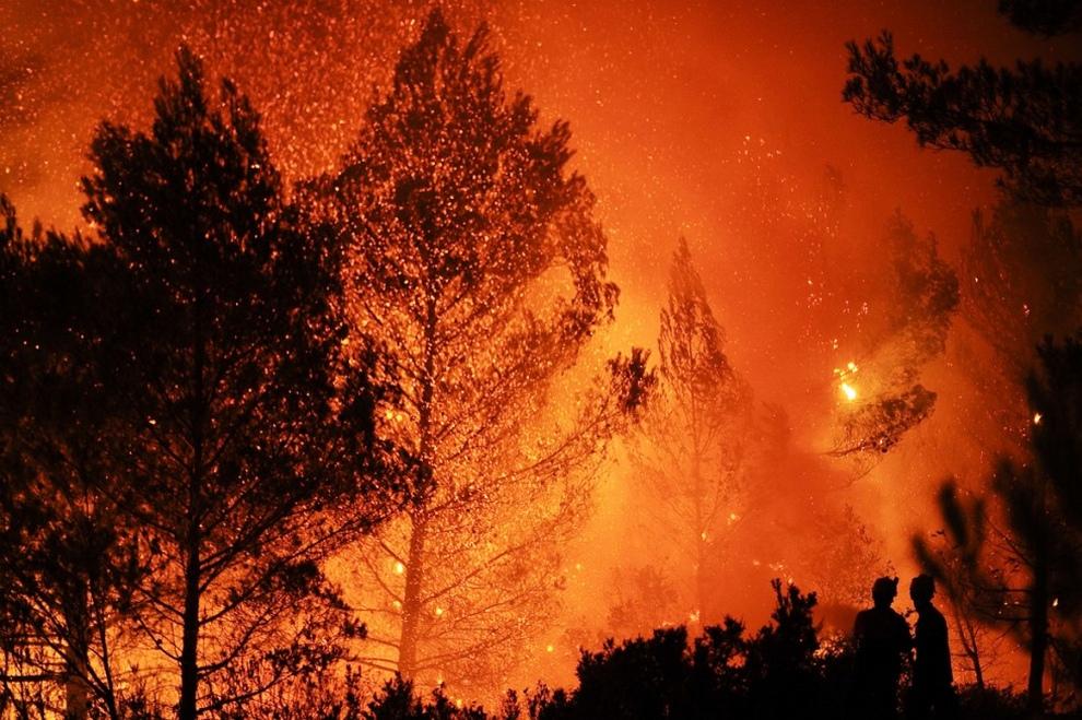 Сила огня: Лесные пожары в Испании (15 фото)