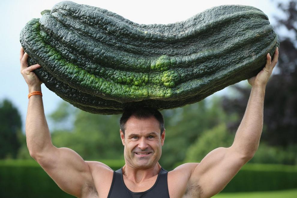 Фестиваль урожая в Англии: Гигантские кабачки, луковицы и прочие фермерские шедевры (13 фото)