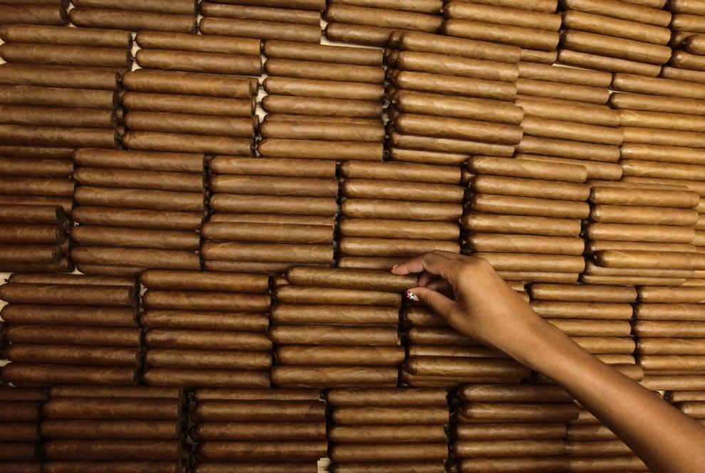 Производство любимых сигар Фиделя Кастро (10 фото)
