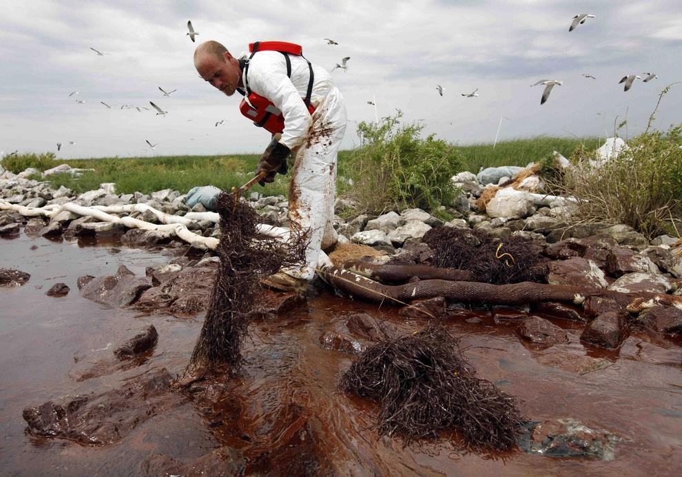 Картинки экологических катастроф