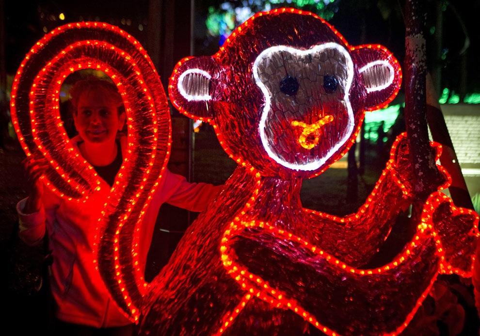 Фигурка обезьяны на выставке иллюминаций в Медельине, департамент Антиокия, Колумбия. (RAUL ARBOLEDA/AFP/Getty Images)