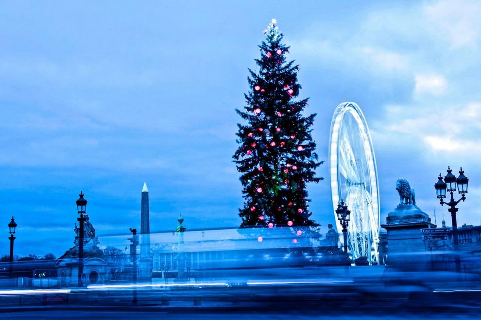 Рождественская ёлка на Площади Согласия. (PacificCoastNews.com)