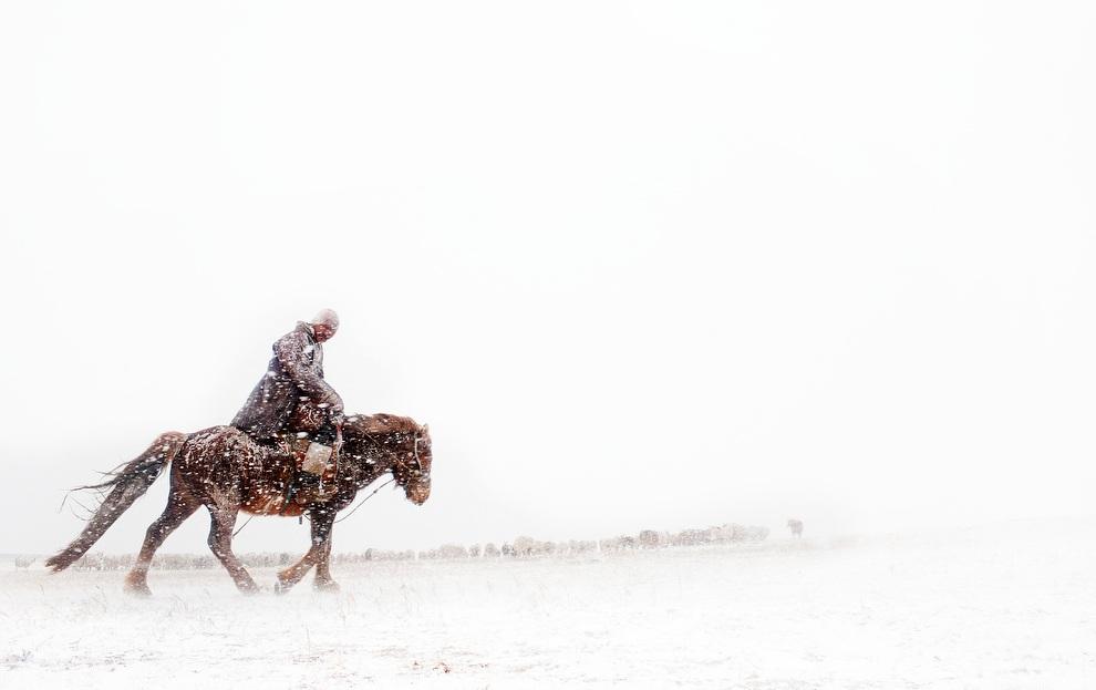Vanishing Cultures Project: Монгольские кочевники (25 фото)