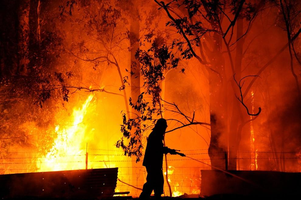 Лесные пожары охватили Австралию (10 фото)