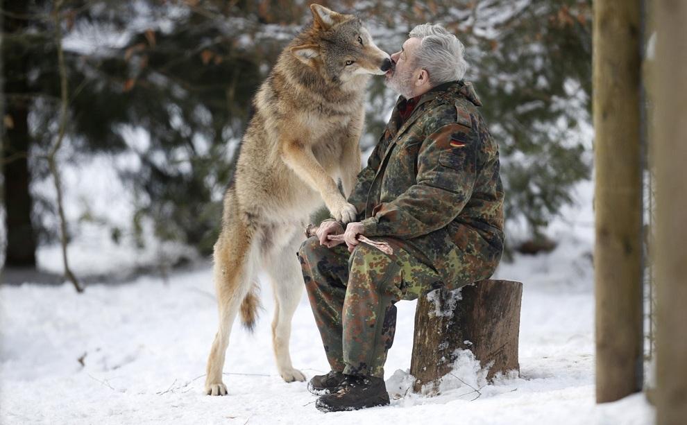 Заклинатель волков из Мерцига (20 фото)