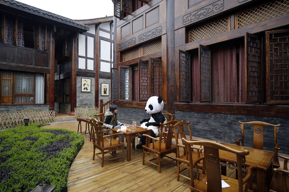 Панда-отель