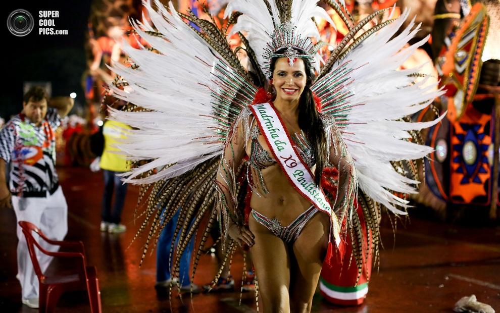 Бразилия карнавал трансвестит
