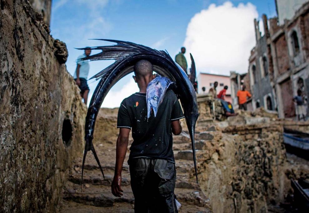 Рыбный промысел в Сомали (11 фото)