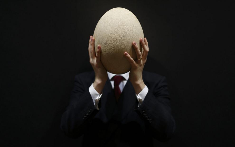 Яйцо слоновой птицы, полностью закрывающее голову работника Christie's, Лондон, Англия, 27 марта 2013 года. (JUSTIN TALLIS/AFP/Getty Images)