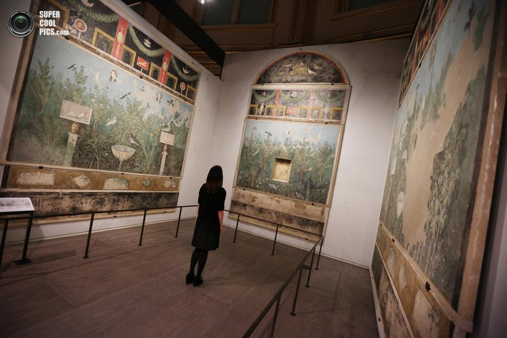 Девушка среди трёх больших фресок из экспозиции «Жизнь и смерть в Помпеях и Геркулануме», Британский музей, Лондон, Англия. (Peter MacDiarmid/Getty Images)