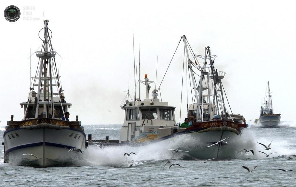 Рыбацкие лодки возвращаются с уловом в порт Мега. (Buddhika Weerasinghe/Getty Images)
