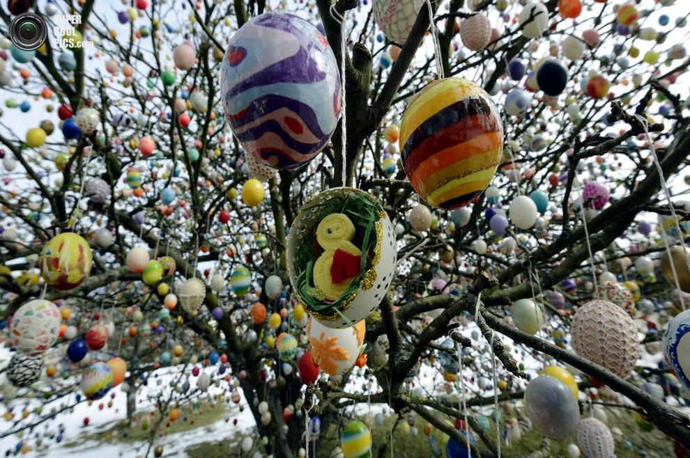 Росписи на яйцах, как видно, самые разные — есть просто великолепные образцы! (Thomas Lohnes/Getty Images)