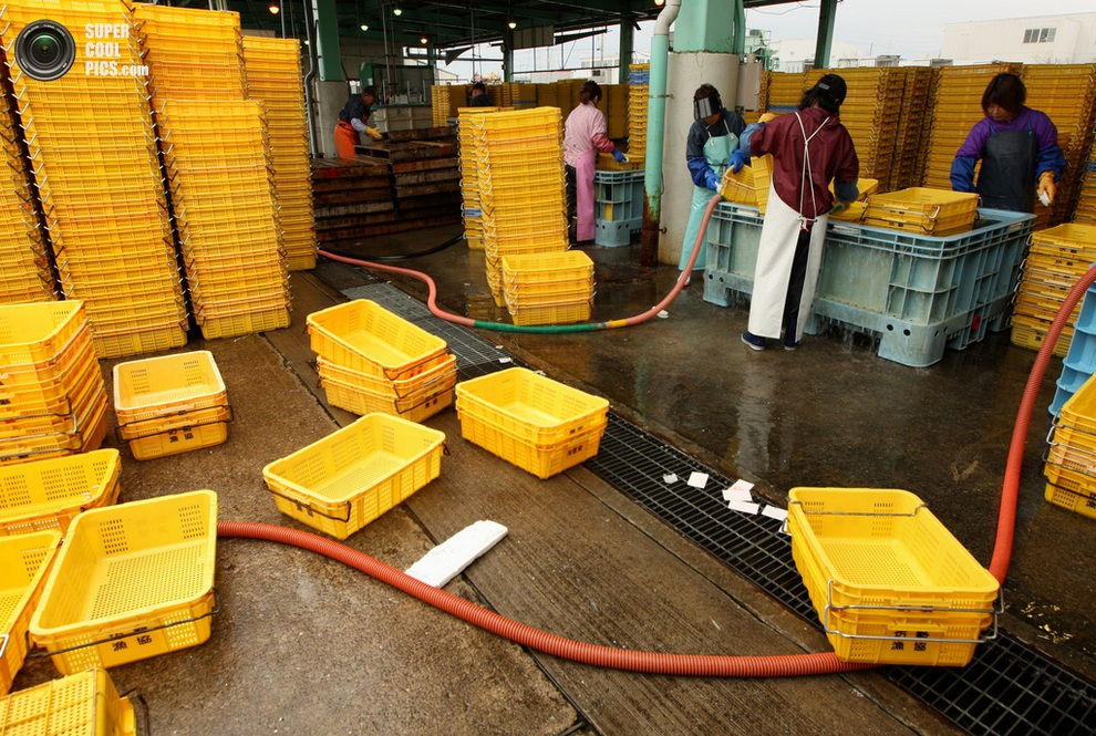 Подготовка контейнеров. (Buddhika Weerasinghe/Getty Images)