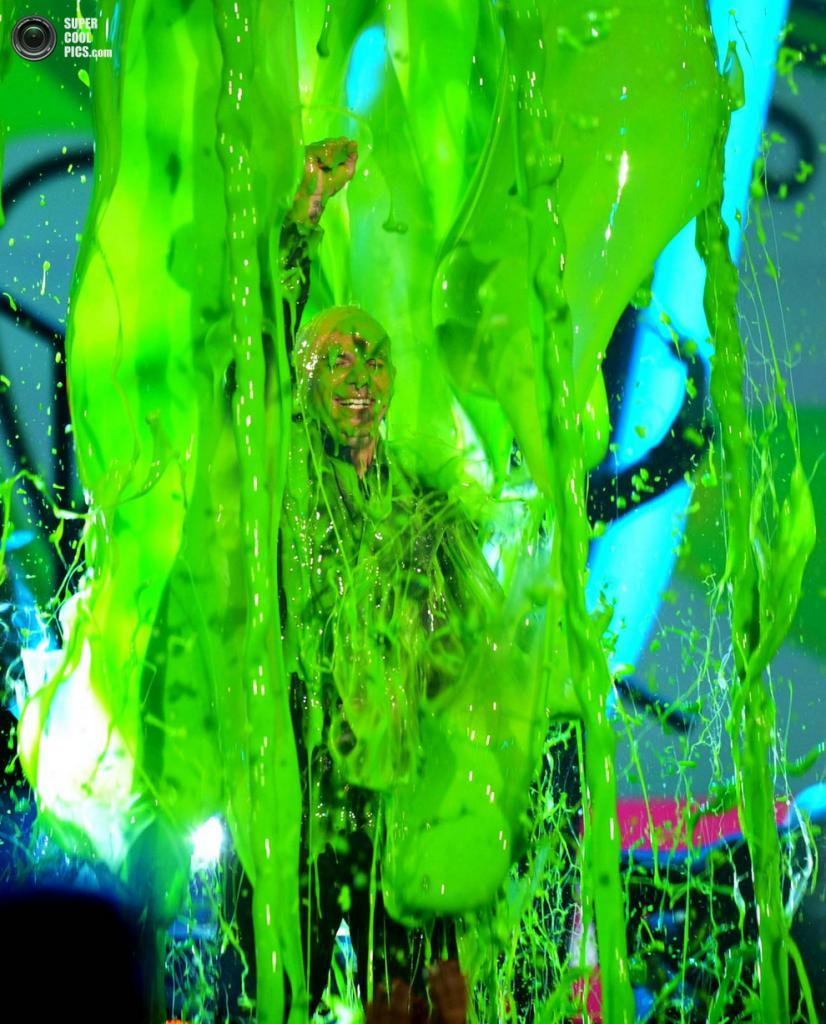 Pitbull в той самой «зелёной жиже». (John Shearer/Invision)