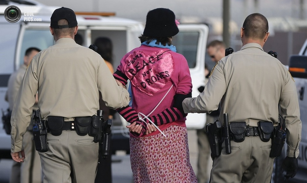 Арест демонстрантов за блокировку федеральной дороги. (AP Photo/Julie Jacobson)