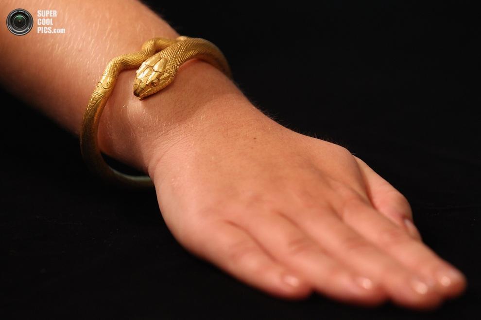 Работница музея примеряет золотой браслет в виде змеи. (Oli Scarff/Getty Images)