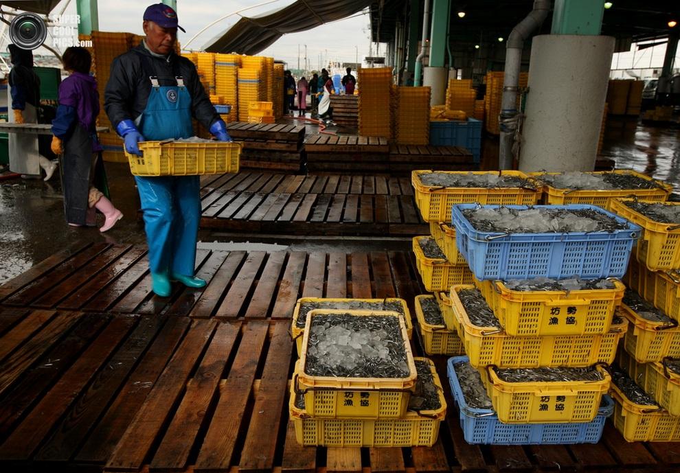 Готовые к отправке контейнеры. (Buddhika Weerasinghe/Getty Images)