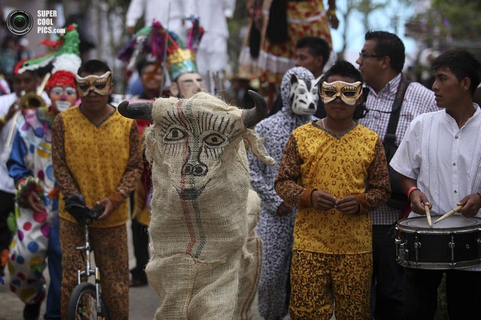 Улыбчивый бык — символ «Лос-Торерос-де-Мекатлан». (AP Photo/Felix Marquez)