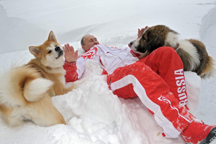 Прогулка президента России Владимира Путина с собаками
