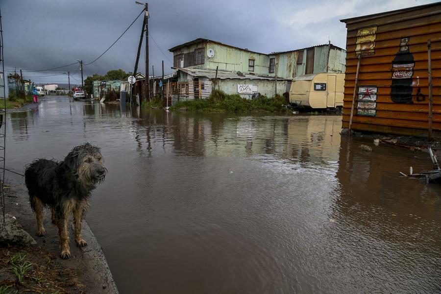 Последствия проливных дождей в Кейптауне (4 фото)