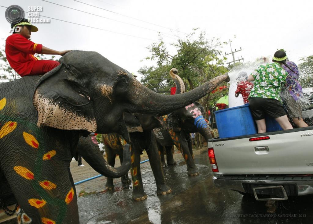 Таиланд. Аюттхая. 12 апреля. Фестиваль «Сонгкран». (EPA/ИТАР-ТАСС/NARONG SANGNAK)