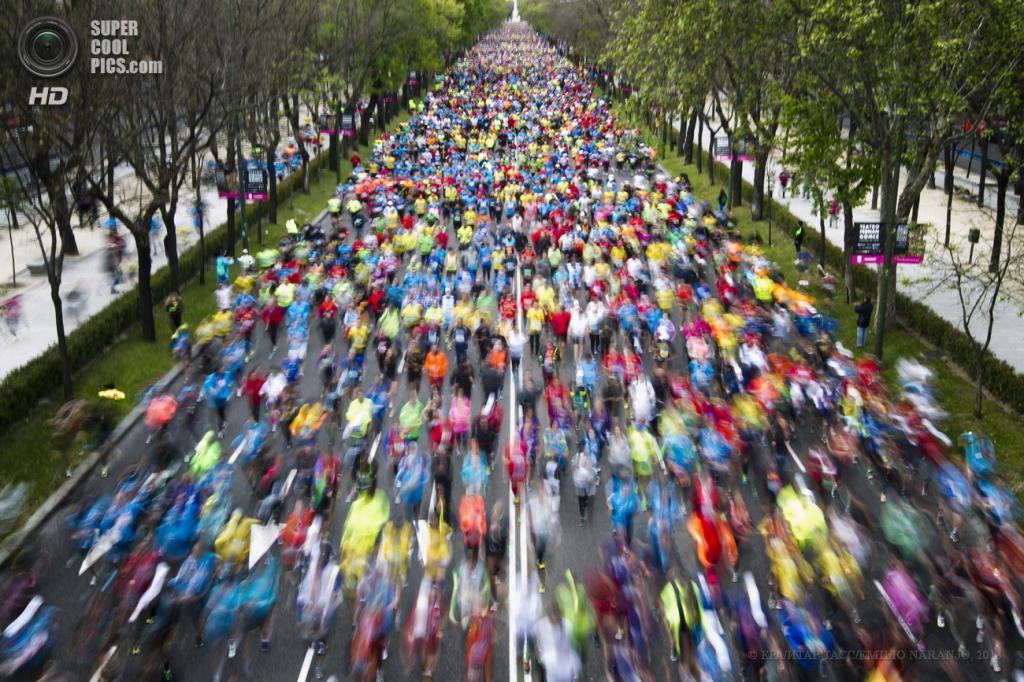 Испания. Мадрид. 28 апреля. Общий вид на 36-й Мадридский марафон. (EPA/ИТАР-ТАСС/EMILIO NARANJO)