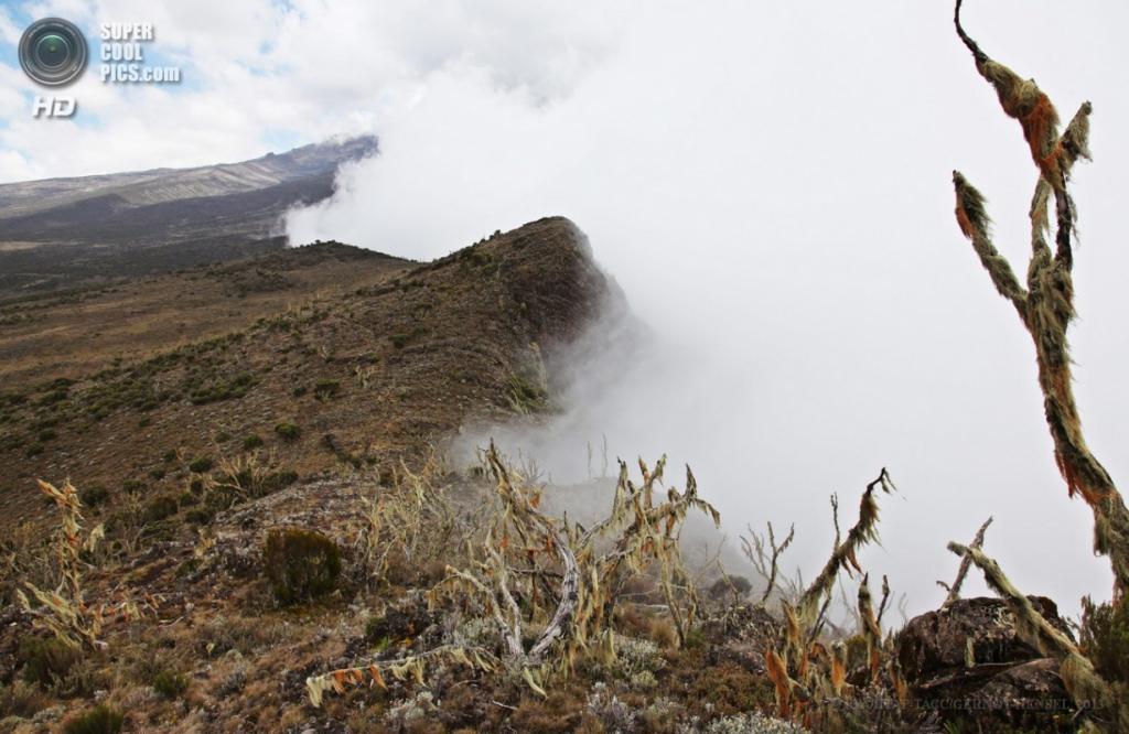 Танзания. Килиманджаро. 10 февраля. Сгустки облаков на краю кратера Шира одноимённого плато. (EPA/ИТАР-ТАСС/GERNOT HENSEL)