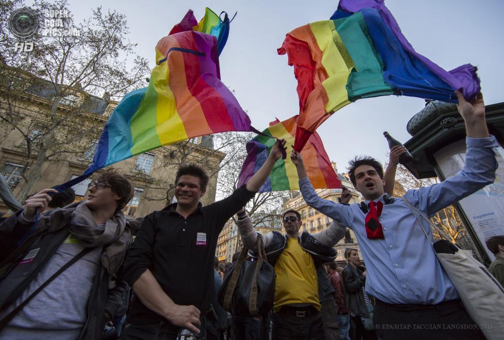 Франция. Париж. 23 апреля. Во время массовой акции в поддержку законопроекта о легализации однополых браков и разрешении этим парам усыновлять детей. (EPA/ИТАР-ТАСС/IAN LANGSDON)