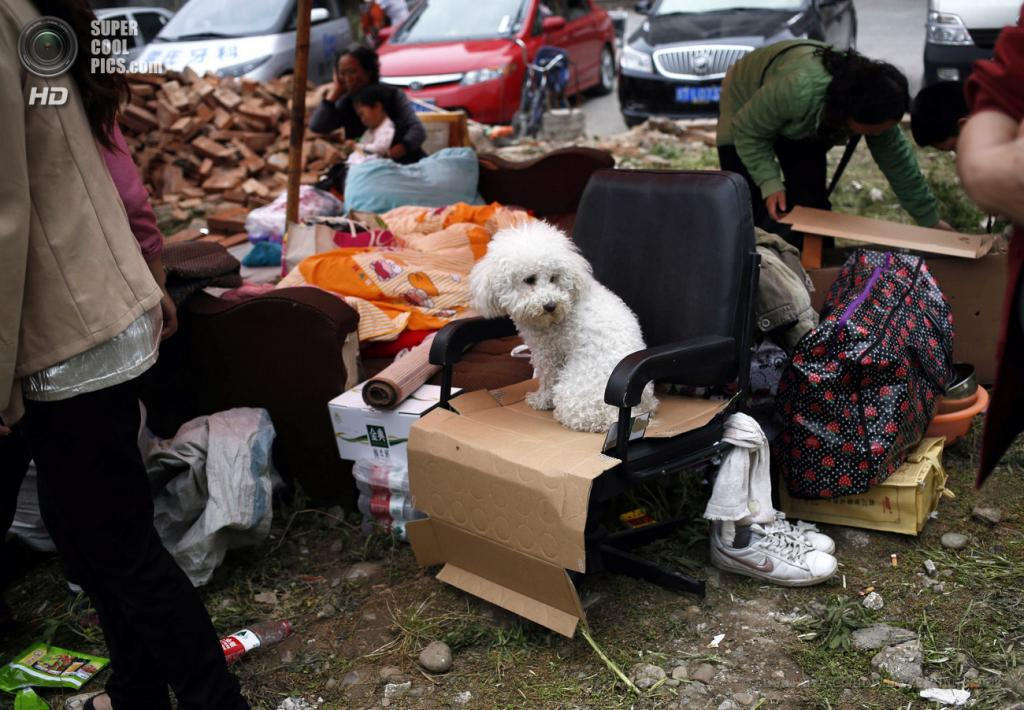 Китай. Яань, Сычуань. 21 апреля. Во временном лагере для пострадавших от землетрясений. (EPA/ИТАР-ТАСС/HOW HWEE YOUNG)
