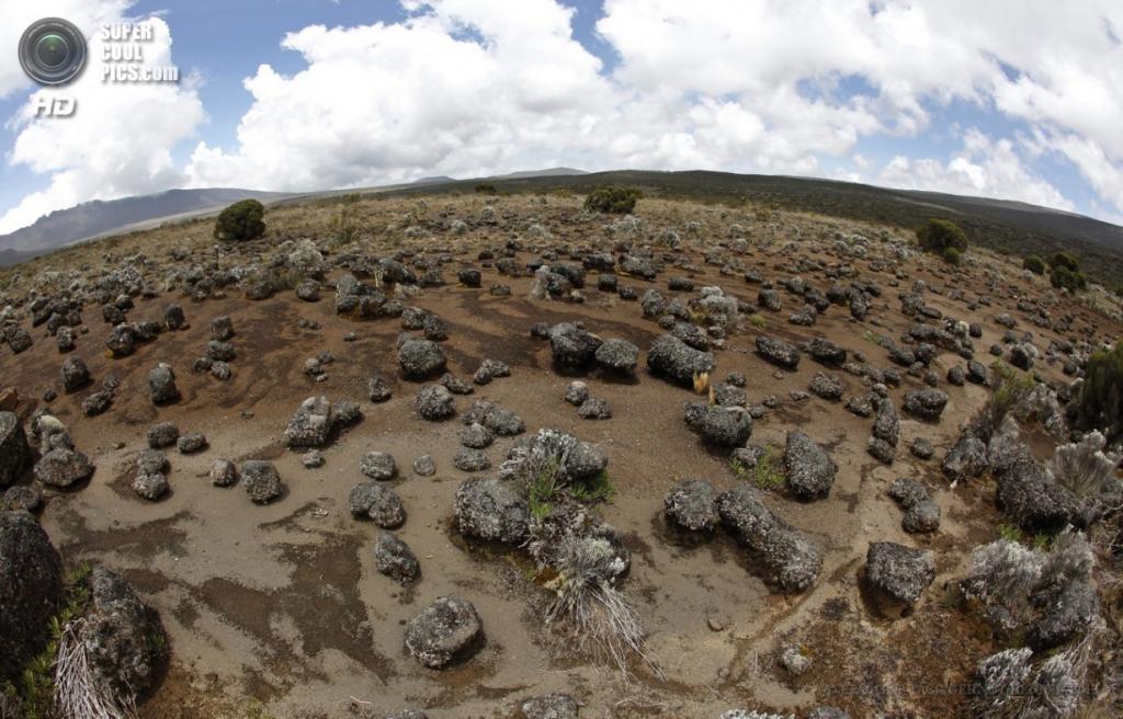 Танзания. Килиманджаро. 10 февраля. Вулканические камни Ширы. (EPA/ИТАР-ТАСС/GERNOT HENSEL)