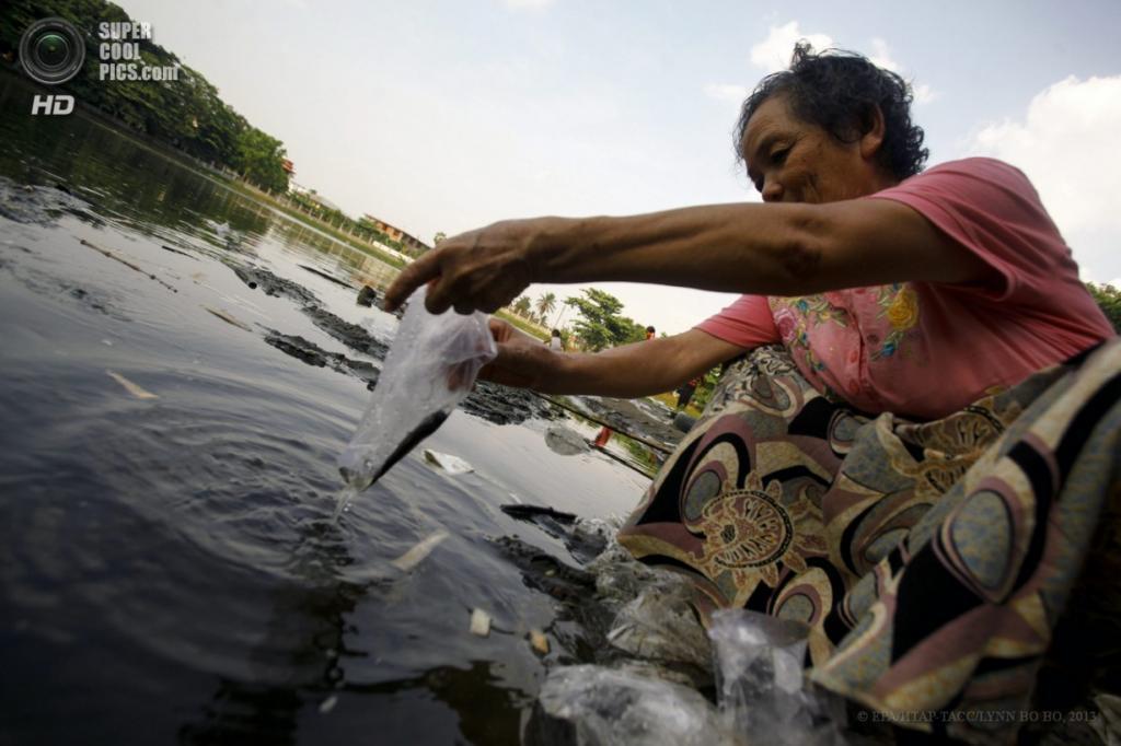 Мьянма. Янгон. 17 апреля. Освобождение рыбы. (EPA/ИТАР-ТАСС/LYNN BO BO)