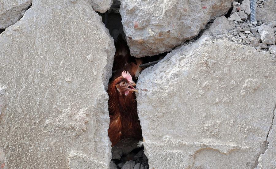 Сирия. Дамаск. 5 мая. Последствия авиаударов Израиля, попавших в научно-исследовательский центр и птицеферму. (EPA/ИТАР-ТАСС/SANA)