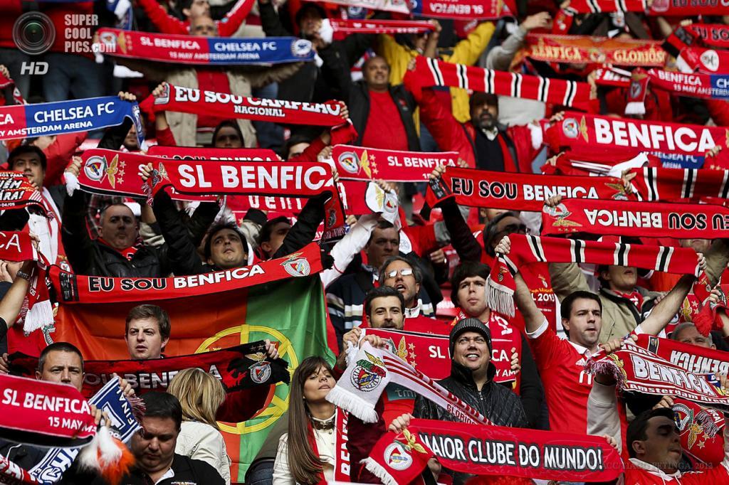 Нидерланды. Амстердам. 15 мая. Фанаты «Бенфики» на финале Лиги Европы УЕФА. (EPA/ИТАР-ТАСС/TIAGO PETINGA)