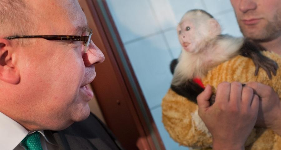Министр по охране окружающей среды Германии навестил в питомнике обезьянку Джастина Бибера