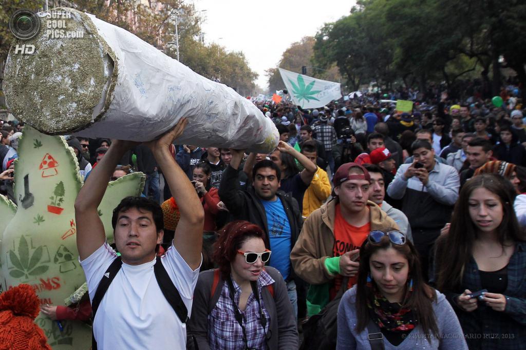 Чили. Сантьяго. 18 мая. Во время акции в поддержку легализации марихуаны. (EPA/ИТАР-ТАСС/MARIO RUIZ)
