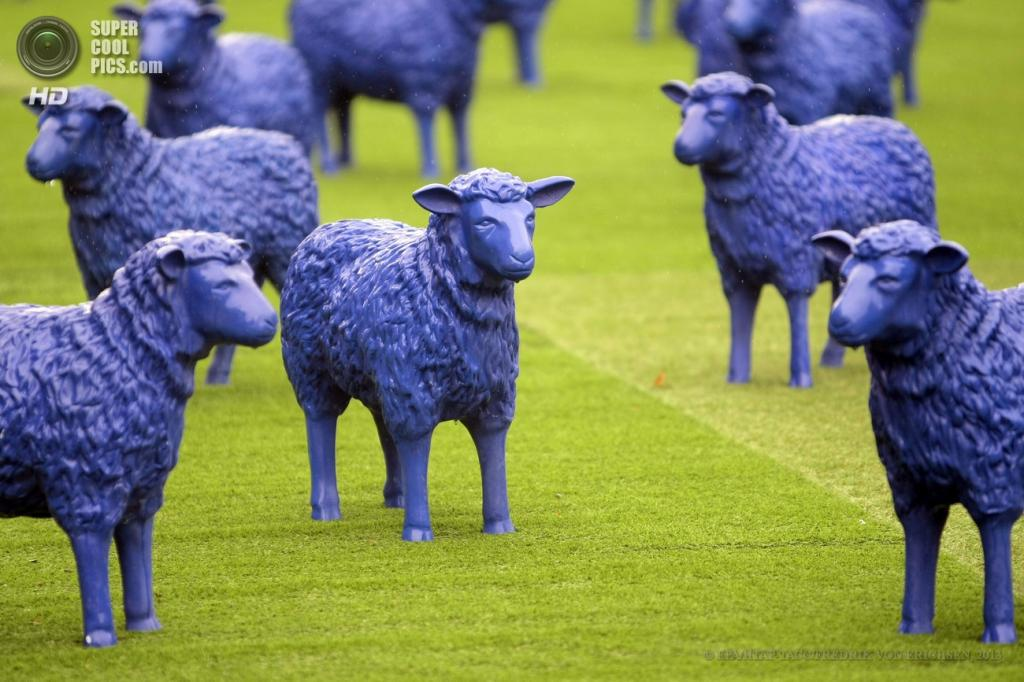 Германия. Майнц, Рейнланд-Пфальц. 29 мая. Инсталляция «Синие овцы» Райнера Бонка и Бертамарии Ретц. (EPA/ИТАР-ТАСС/FREDRIK VON ERICHSEN)