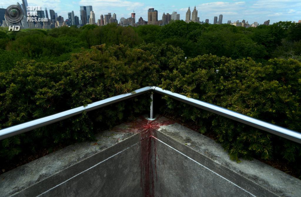 США. Нью-Йорк. 13 мая. Инсталляция Имрана Куреши на крыше Метрополитен-музея. (EPA/ИТАР-ТАСС/JUSTIN LANE)