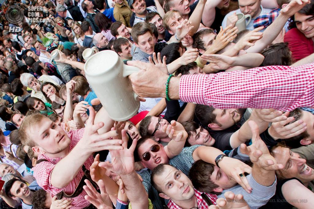 Германия. Эрланген, Бавария. 16 мая. Гуляки пытаются ухватить бесплатную кружку пива. (EPA/ИТАР-ТАСС/DANIEL KARMANN)