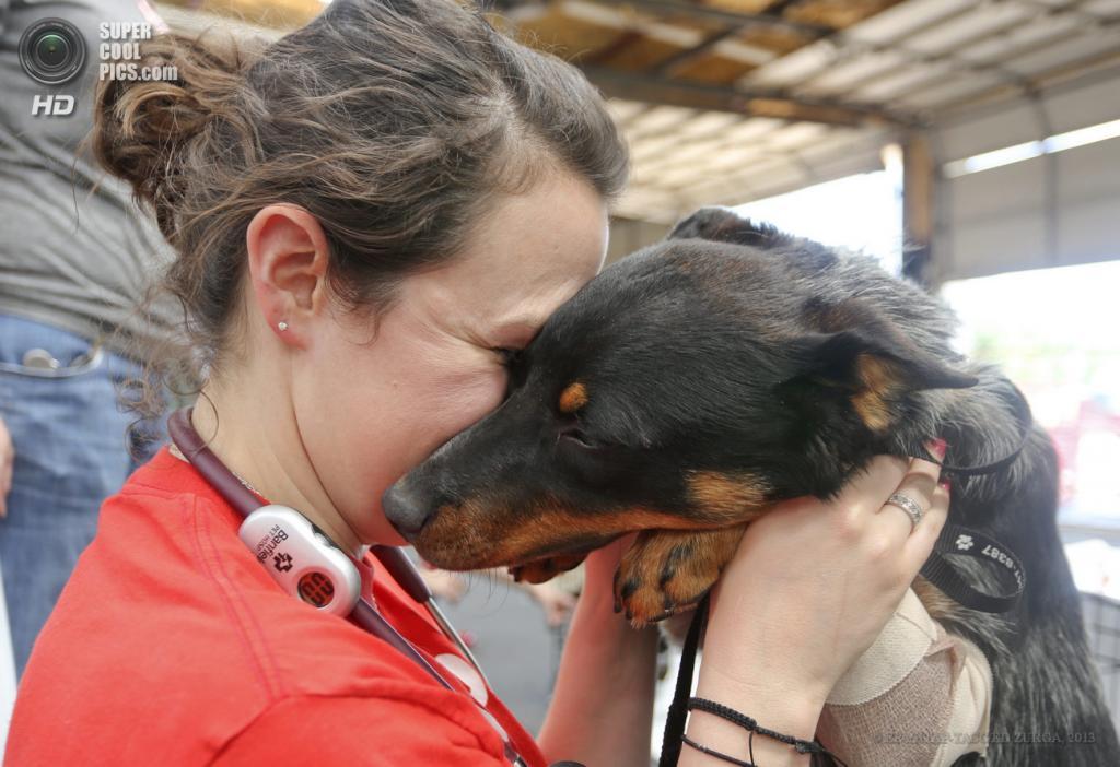 США. Мур, Оклахома. 22 мая. Ассистент ветеринара обнимает пса, пострадавшего в результате торнадо. (EPA/ИТАР-ТАСС/ED ZURGA)