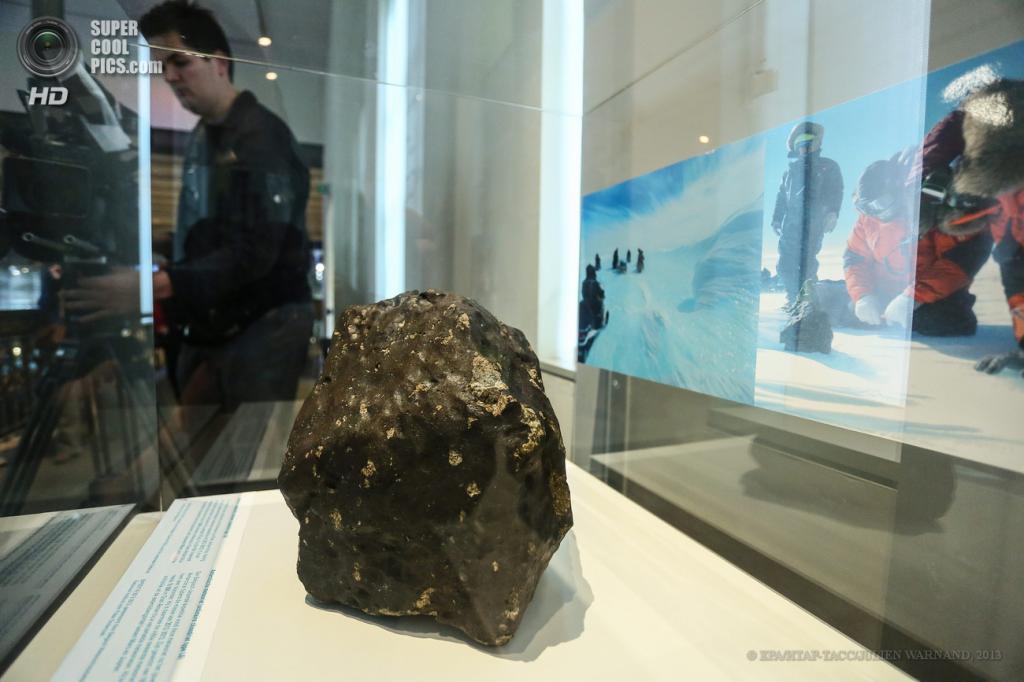 Бельгия. Брюссель. 21 мая. Презентация самого большого «антарктического» метеорита последних 25 лет в Музее естественных наук. (EPA/ИТАР-ТАСС/JULIEN WARNAND)